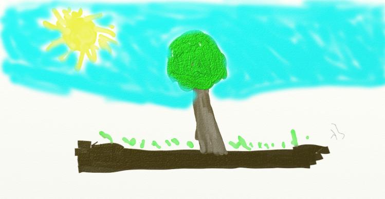 Arbre ciel soleil