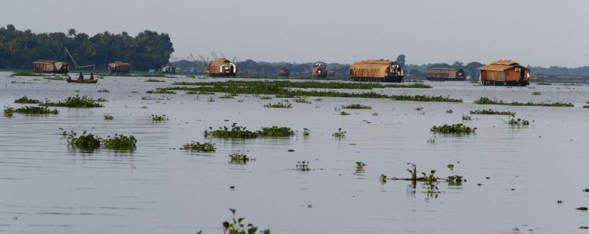 backwaters-kerala